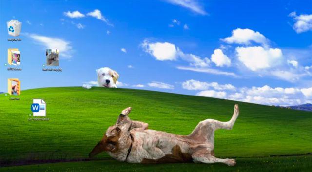 Microsoft félicite Noël avec Halo, Minecraft, Flight Simulator et Rufus le chien