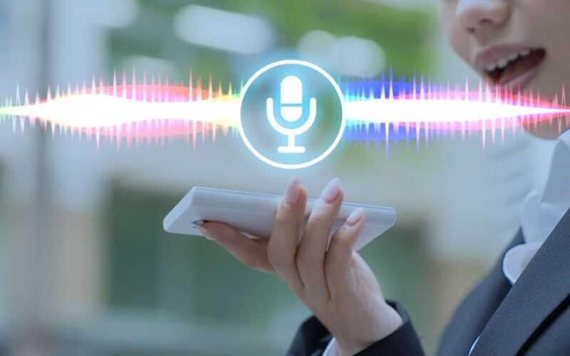 Assistant Vocal Ok Google