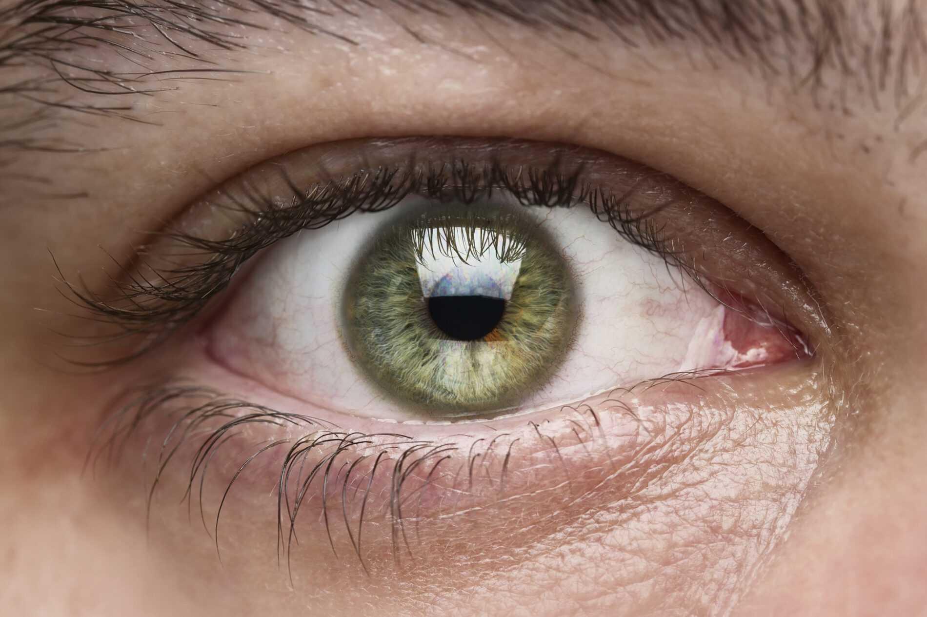 La reconnaissance visuelle de Microsoft surpasse l'œil humain