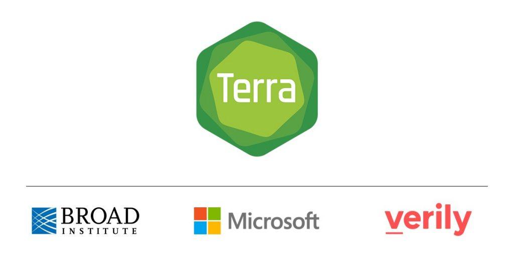 Terra et Microsoft ensemble