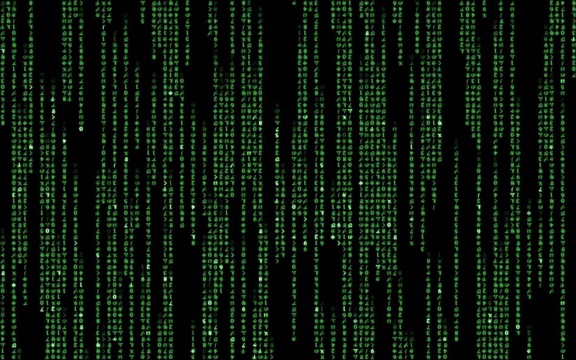 Les curiosités de la mise au rebut du Web, du référencement aux fuites
