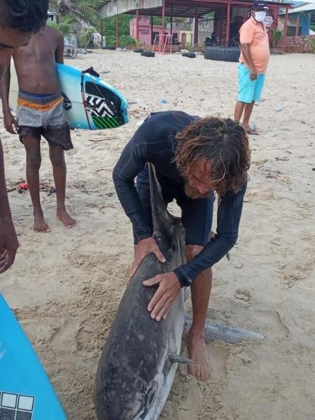 Moonfish semble mort sur la plage de Fortaleza.  Image: Reproduction / Réseaux sociaux