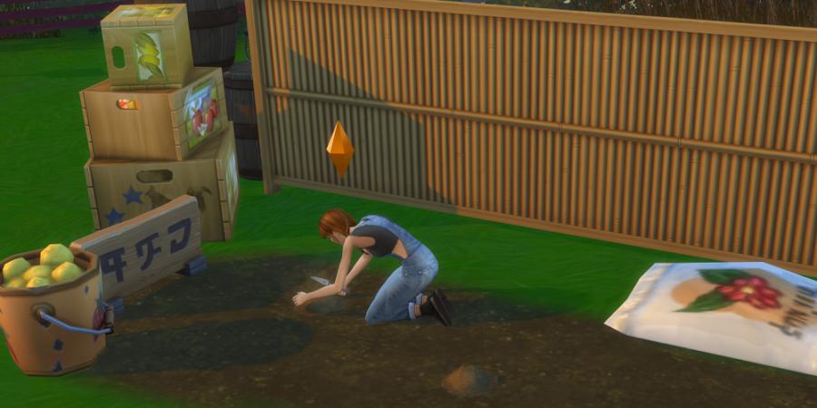 1619149508 944 Comment planter des graines dans les Sims 4