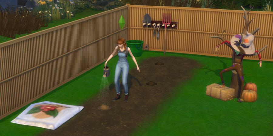1619149510 458 Comment planter des graines dans les Sims 4