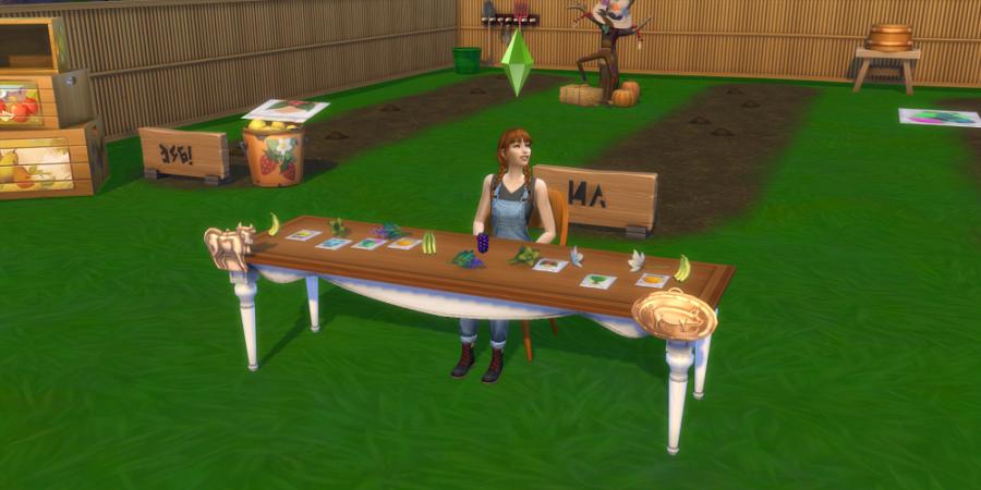 1619149511 248 Comment planter des graines dans les Sims 4