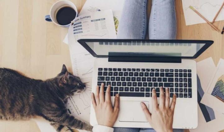 Télétravail : les entreprises contraintes de payer des hausses de factures internet