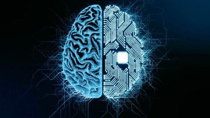 Illustration biologique du cerveau et du cerveau de la machine