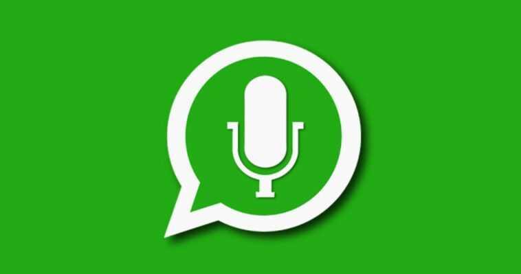 WhatsApp vous permettra d'écouter les notes vocales avant de les envoyer