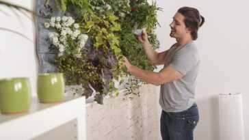 Grandes manœuvres de printemps, pour la maison et le jardin, la solution est en ligne