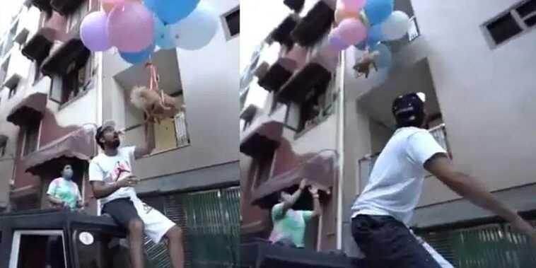 Attache son chien à des ballons à l'hélium pour une vidéo YouTube: arrêté
