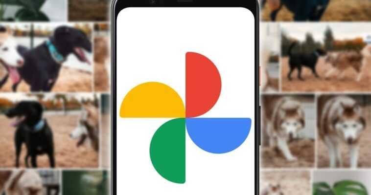 Comment libérer de l'espace Google Photos avec le nouvel outil gratuit de Google