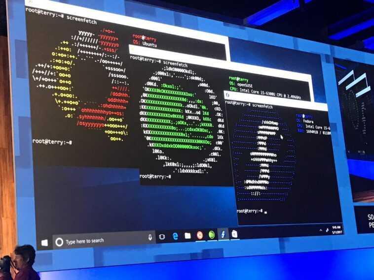 El siguiente nivel de Linux en Windows 10 ha llegado