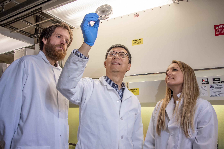 Les chercheurs se préparent à envoyer des champignons faire le tour de la lune