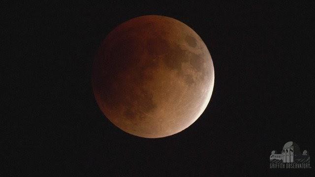 Voir des photos de leclipse de la Lune a travers