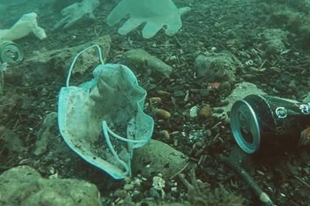 Aujourd'hui c'est le Jour des Océans, que l'on tue (aussi) en jetant les masques par terre