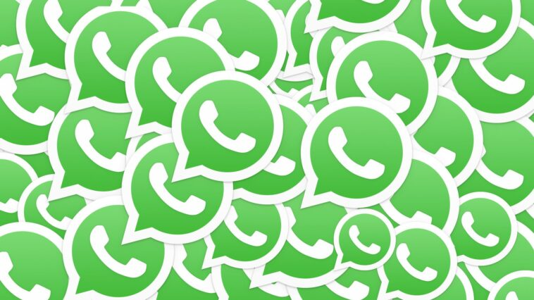 Que se passe-t-il si vous n'utilisez pas votre compte WhatsApp pendant 45 jours
