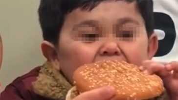 Qui est Burgirr, le garçon devenu viral qui n'est pas vraiment un enfant