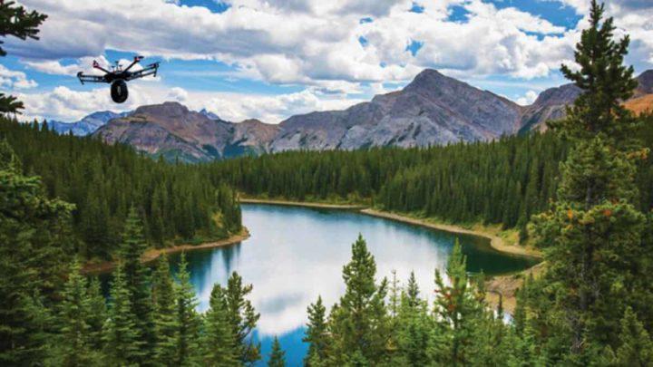 Image de drones forestiers Flash