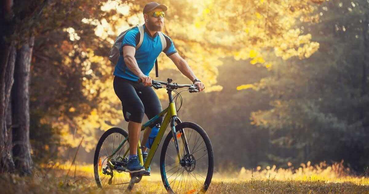Journée internationale du vélo