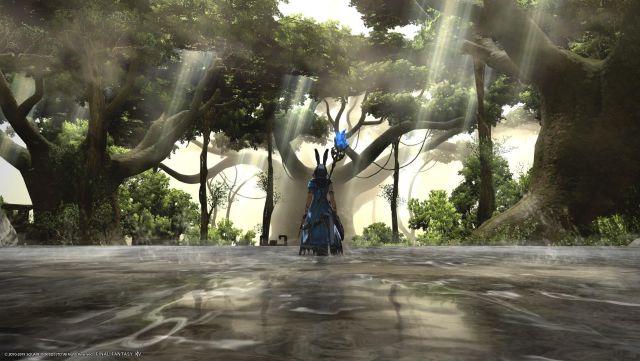 Pourquoi essayer Final Fantasy XIV ?  Un MMO en état de grâce