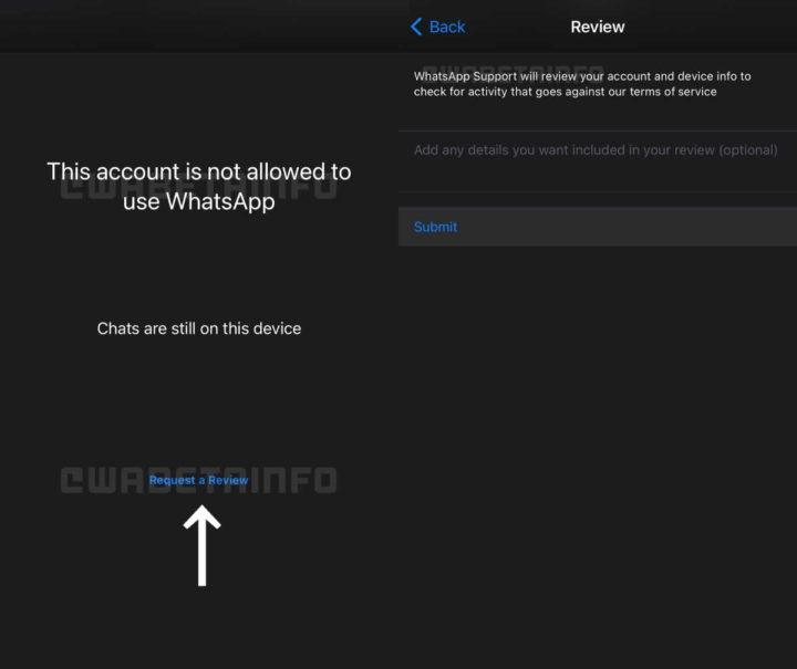 Le compte WhatsApp valide les utilisateurs d'applications
