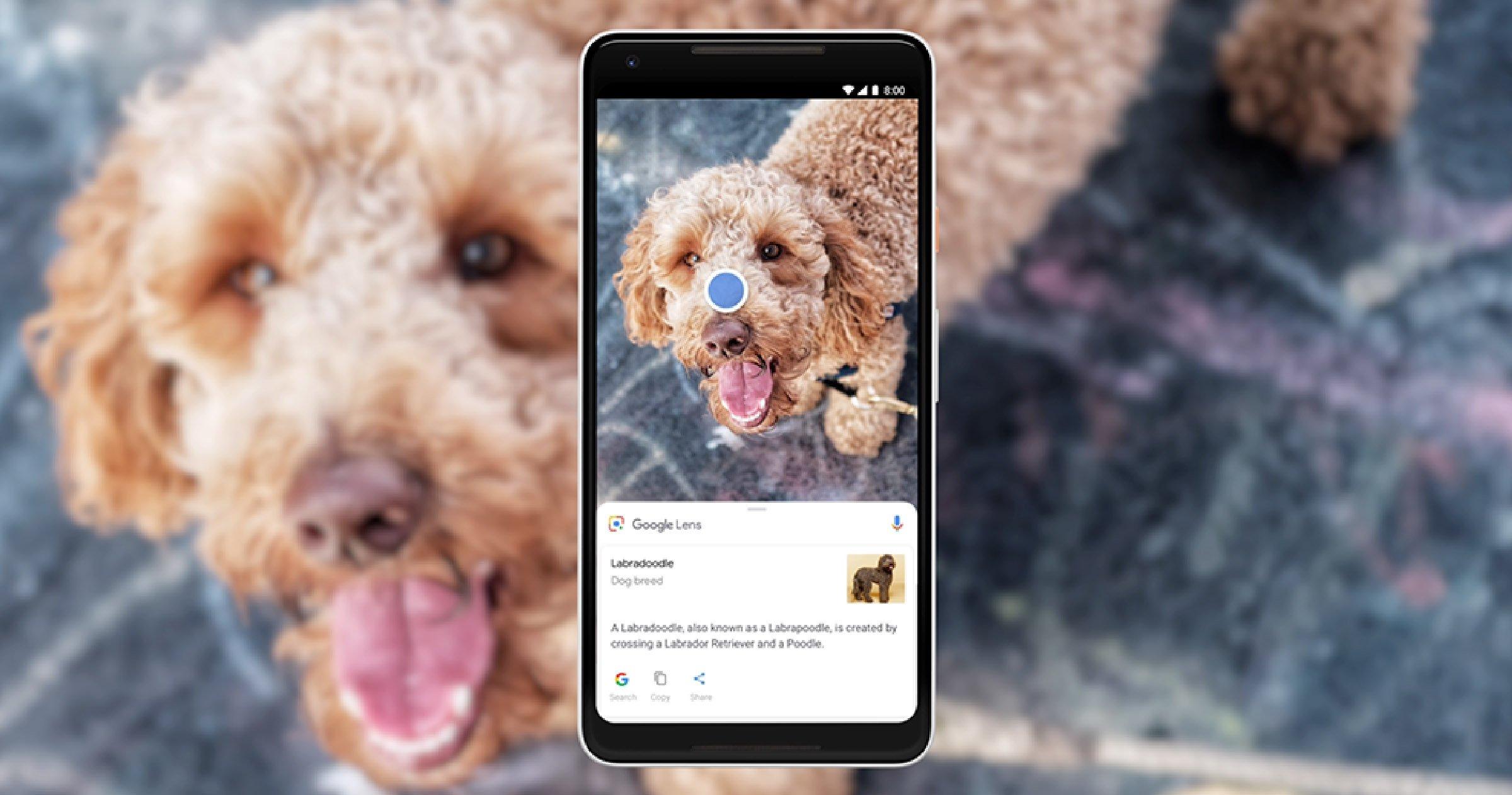 Google Lens sur un mobile Android