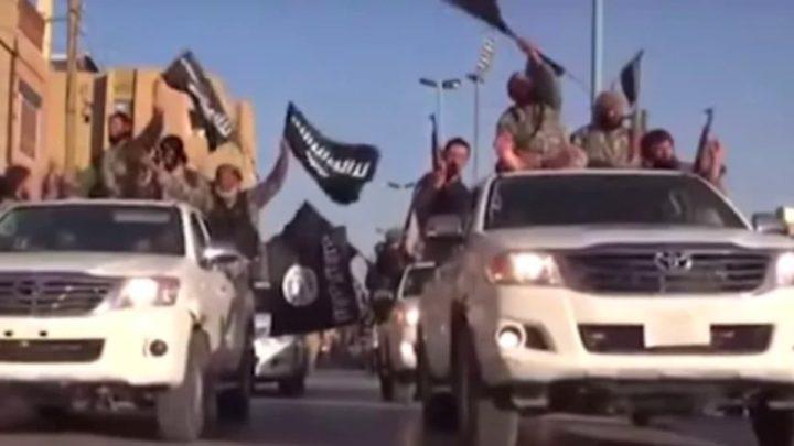Image ISIS avec de nouveaux pick-up Toyota