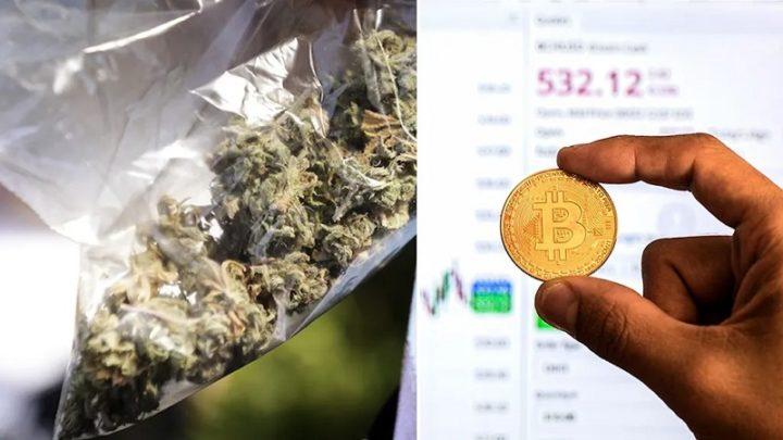 1630156144 862 Bitcoins un echec bureaucratique fait des trafiquants de drogue