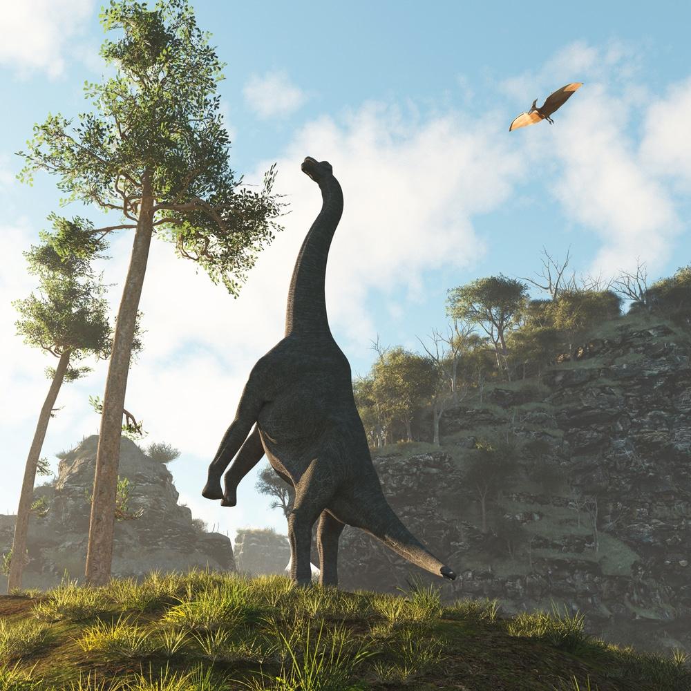 Deux nouvelles especes de dinosaures decouvertes par des scientifiques chinois