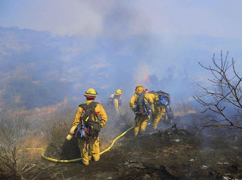 Les pompiers éteignent un feu de forêt