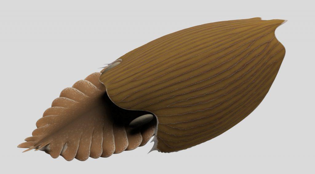 Rendu 3D de Titanokorys gainesi