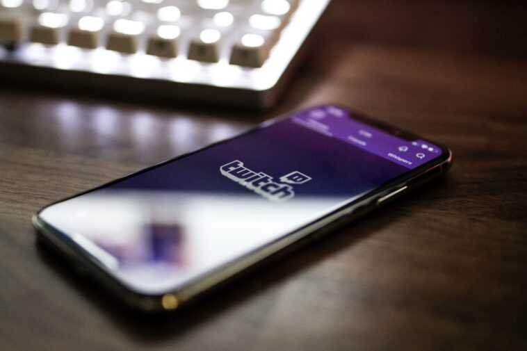 """Twitch Poursuit Deux Organisateurs Présumés De """"raid Haineux"""" Pour Exposer"""