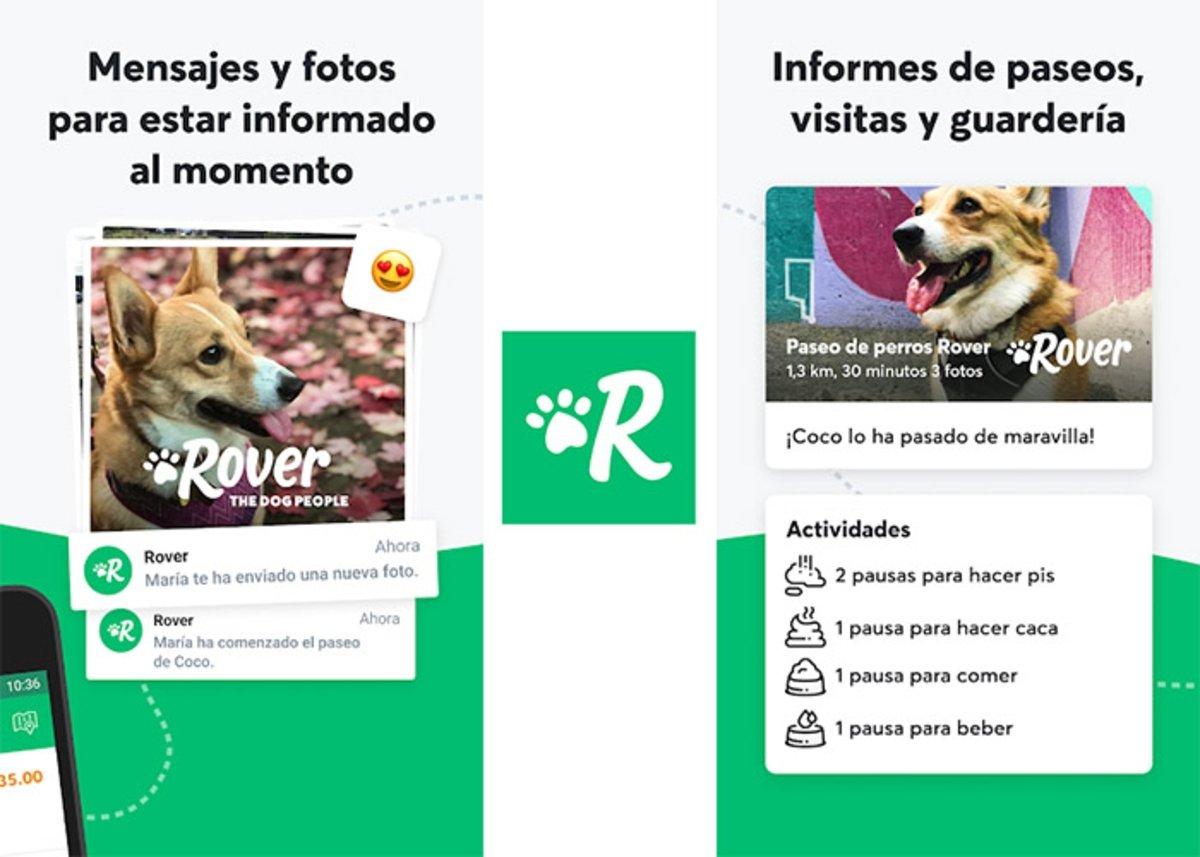 Rover - Promenades de chiens, visites et rapports de garderie