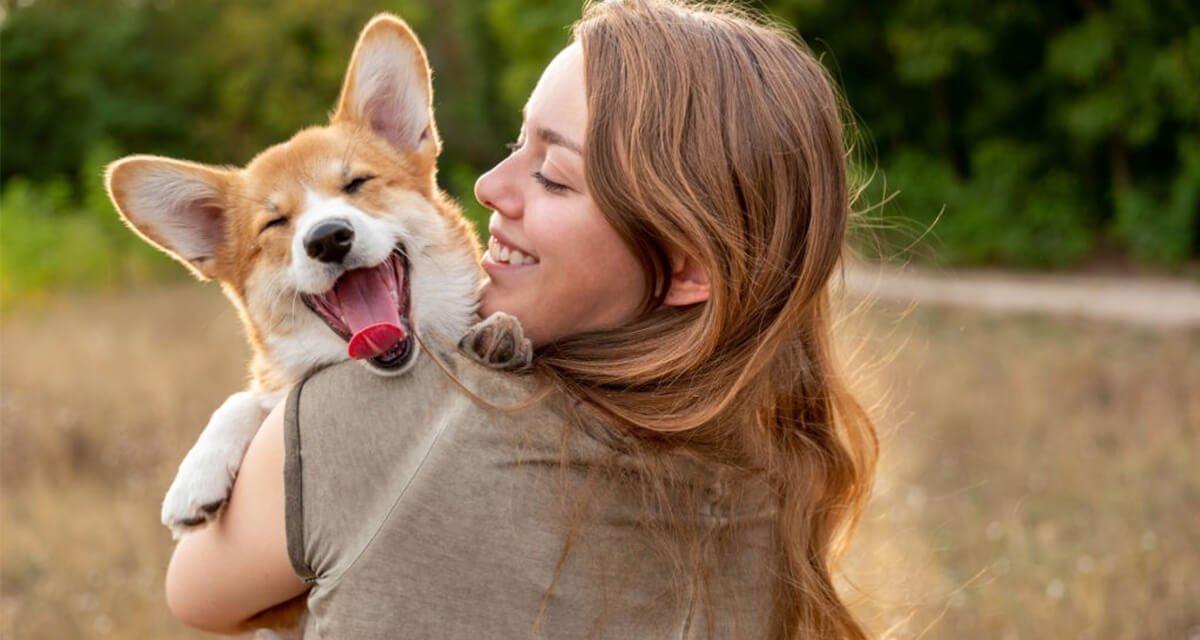 8 applications que vous devriez installer sur votre mobile si vous avez un chien