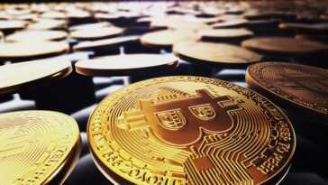 """Le Salvador """"acheté La Trempette,"""" A Ajouté 150 Bitcoins à"""