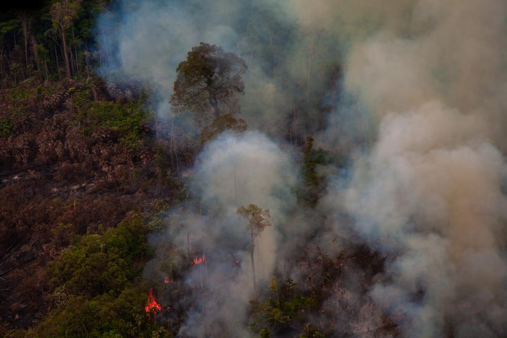 Les incendies sont responsables de plus de 47 000 hospitalisations