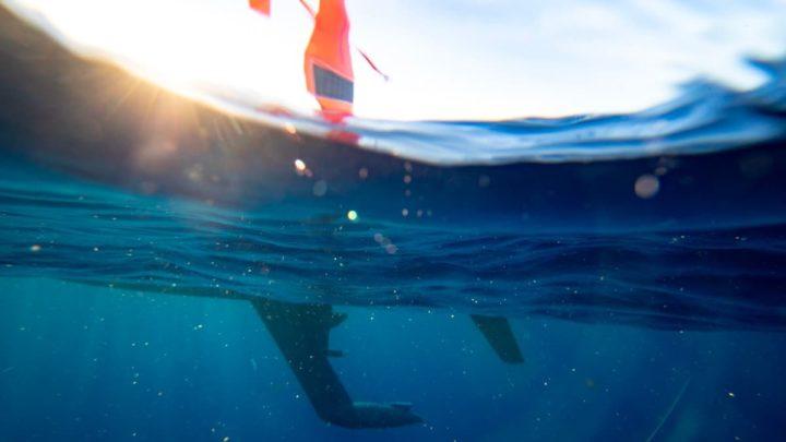 1633206245 476 Un drone oceanique capture des images sans precedent de lactivite